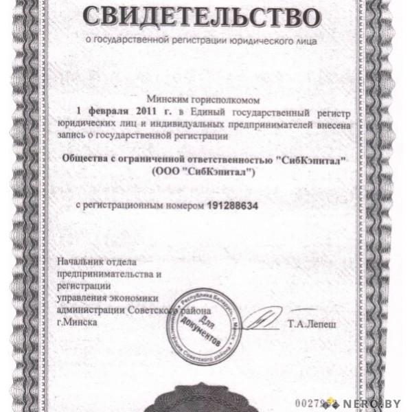 Свидетельство и чек (образец)